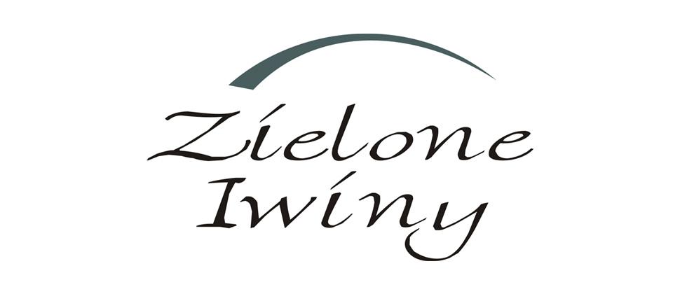 projekt-logotypu-wroclaw-hajto1