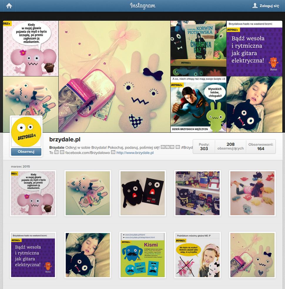 prowadzenie_instagramu_brzydale
